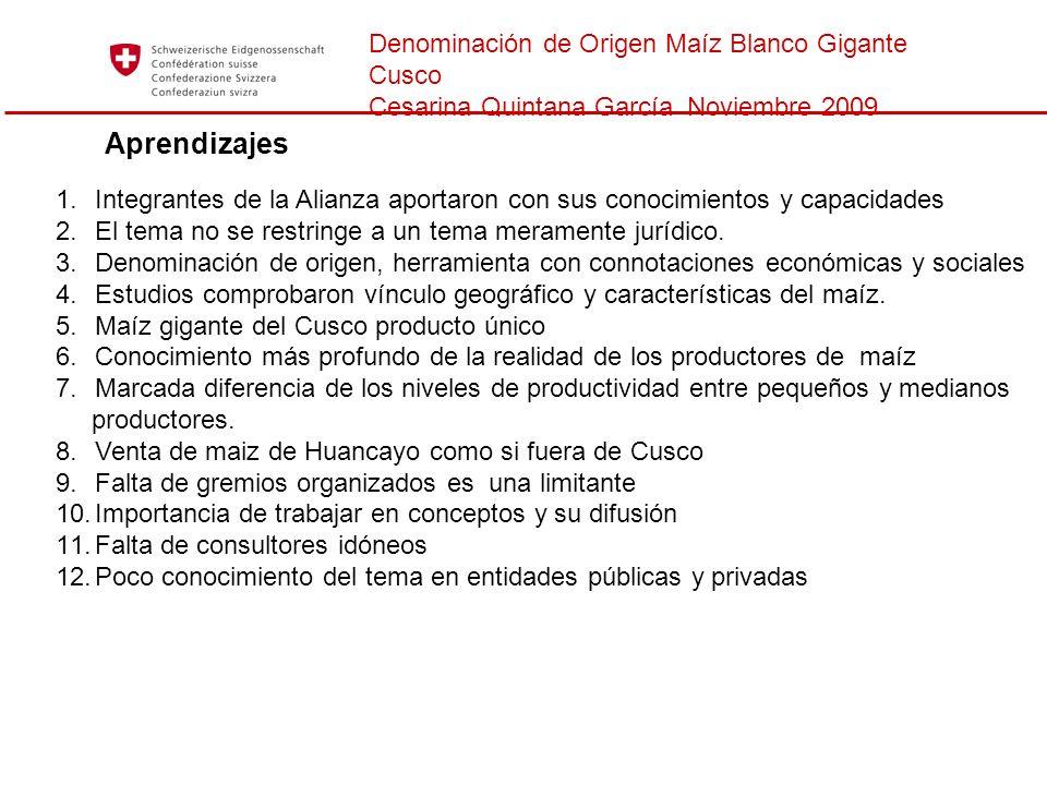 Denominación de Origen Maíz Blanco Gigante Cusco Cesarina Quintana García Noviembre 2009 Aprendizajes 1.Integrantes de la Alianza aportaron con sus co