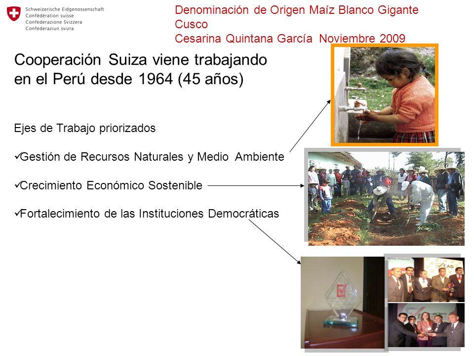 Denominación de Origen Maíz Blanco Gigante Cusco Cesarina Quintana García Noviembre 2009 Cooperación Suiza viene trabajando en el Perú desde 1964 (45