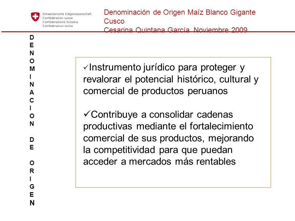 Denominación de Origen Maíz Blanco Gigante Cusco Cesarina Quintana García Noviembre 2009 Instrumento jurídico para proteger y revalorar el potencial h