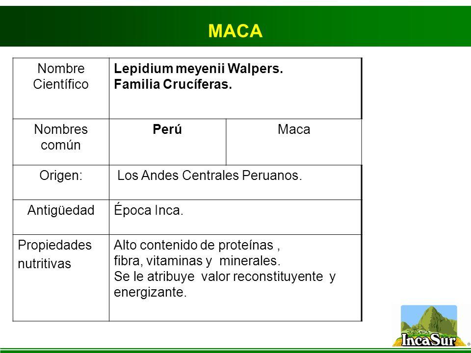 MACA Nombre Científico Lepidium meyenii Walpers. Familia Crucíferas. Nombres común PerúMaca Origen: Los Andes Centrales Peruanos. AntigüedadÉpoca Inca
