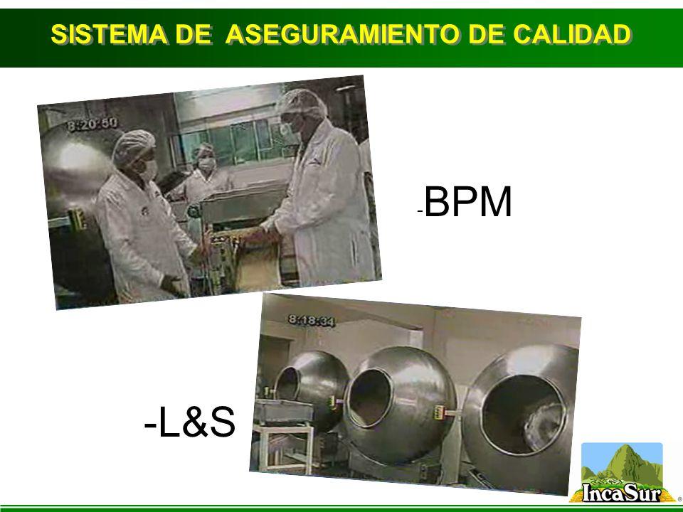 - BPM -L&S SISTEMA DE ASEGURAMIENTO DE CALIDAD