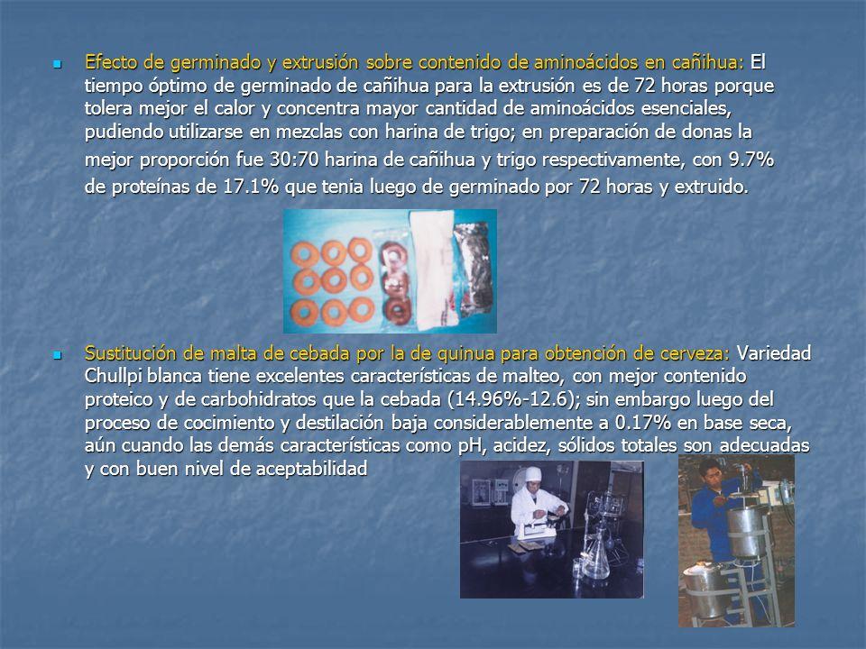 Obtención de harinas instantáneas a base de extruidos de cañihua y trigo: Obtención de harinas instantáneas a base de extruidos de cañihua y trigo: Se utilizó un extrusor de tornillo simple a 140ºc de temperatura y 44 atm de presión se probaron diferentes niveles de mezclas, resultando nutricionalmente mejor la mezcla 50:50; sin embargo con la prueba de aceptabilidad organoléptica mejores resultados se obtuvieron con la mezcla 45-45-10 de cañihua-trigo y azúcar.