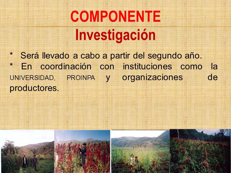 COMPONENTE Investigación * Será llevado a cabo a partir del segundo año. * En coordinación con instituciones como la UNIVERSIDAD, PROINPA y organizaci