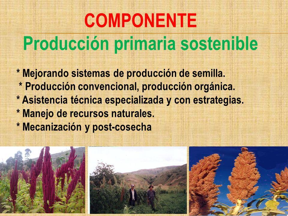 COMPONENTE Producción primaria sostenible * Mejorando sistemas de producción de semilla. * Producción convencional, producción orgánica. * Asistencia