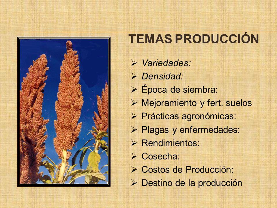Variedades: Densidad: Época de siembra: Mejoramiento y fert. suelos Prácticas agronómicas: Plagas y enfermedades: Rendimientos: Cosecha: Costos de Pro