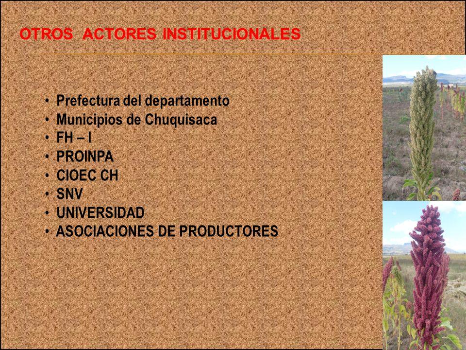 OTROS ACTORES INSTITUCIONALES Prefectura del departamento Municipios de Chuquisaca FH – I PROINPA CIOEC CH SNV UNIVERSIDAD ASOCIACIONES DE PRODUCTORES