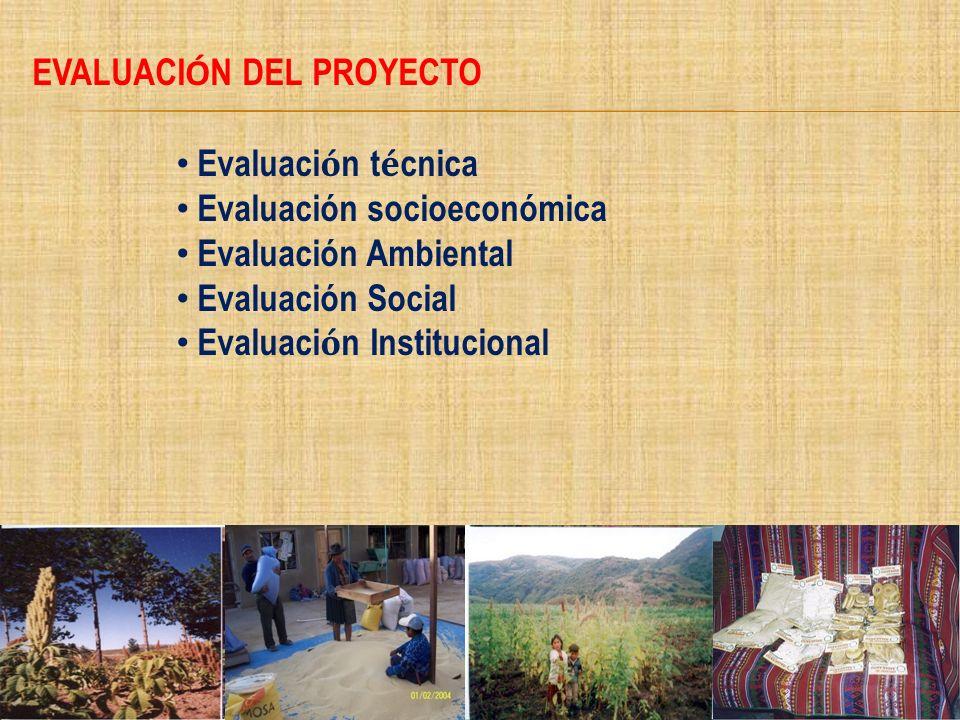 EVALUACI Ó N DEL PROYECTO Evaluaci ó n t é cnica Evaluación socioeconómica Evaluación Ambiental Evaluación Social Evaluaci ó n Institucional