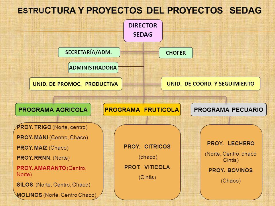 PROYECTO : IMPLEMENTACIÓN DE DESARROLLO DEL AMARANTO