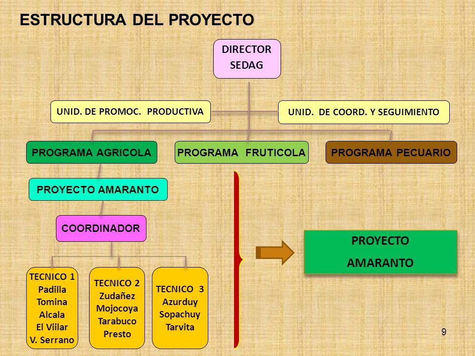 COMPLEJO INTEGRAL PRODUCTIVO DEL AMARANTO - PREFECTURA DE CHUQUISACA COMPONENTE Comercialización organizada y gestión empresarial Asistencia técnica y capacitación.