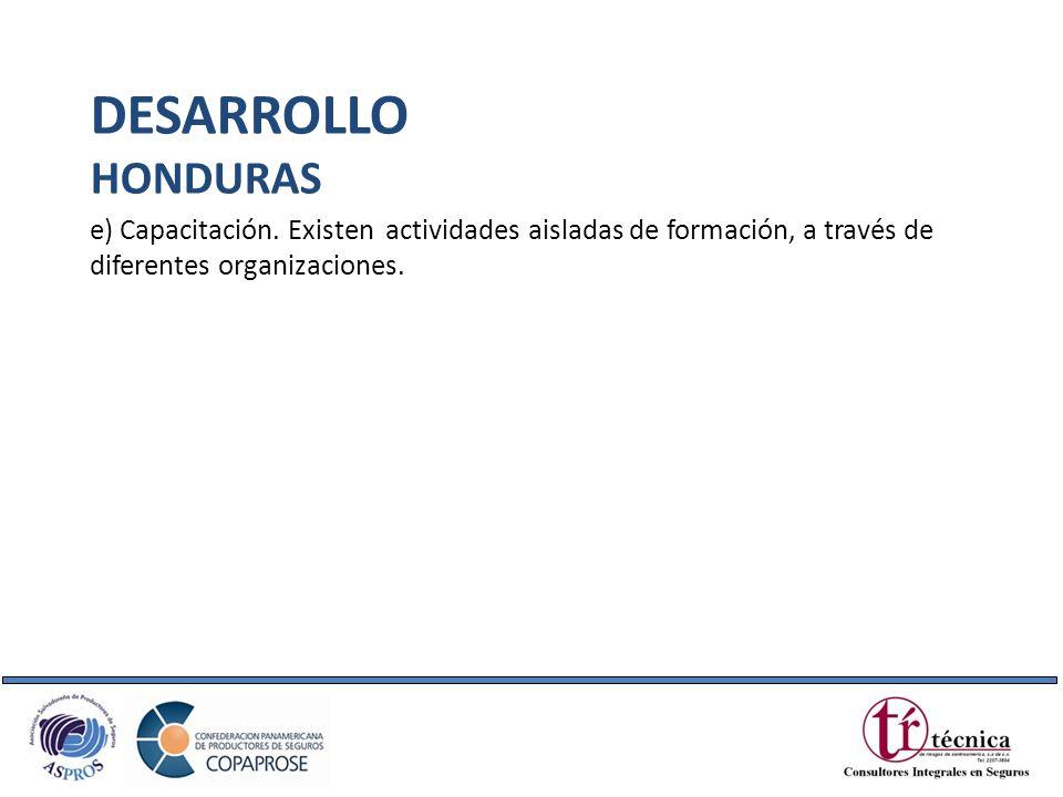 e) Capacitación. Existen actividades aisladas de formación, a través de diferentes organizaciones. DESARROLLO HONDURAS
