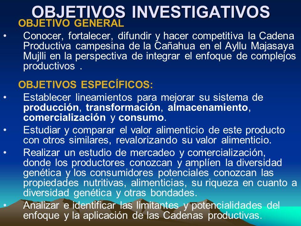 OBJETIVOS INVESTIGATIVOS OBJETIVO GENERAL Conocer, fortalecer, difundir y hacer competitiva la Cadena Productiva campesina de la Cañahua en el Ayllu M