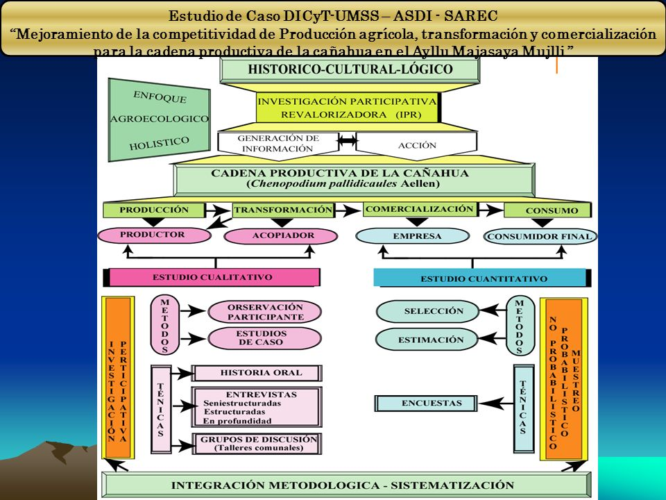 Estudio de Caso DICyT-UMSS – ASDI - SAREC Mejoramiento de la competitividad de Producción agrícola, transformación y comercialización para la cadena p