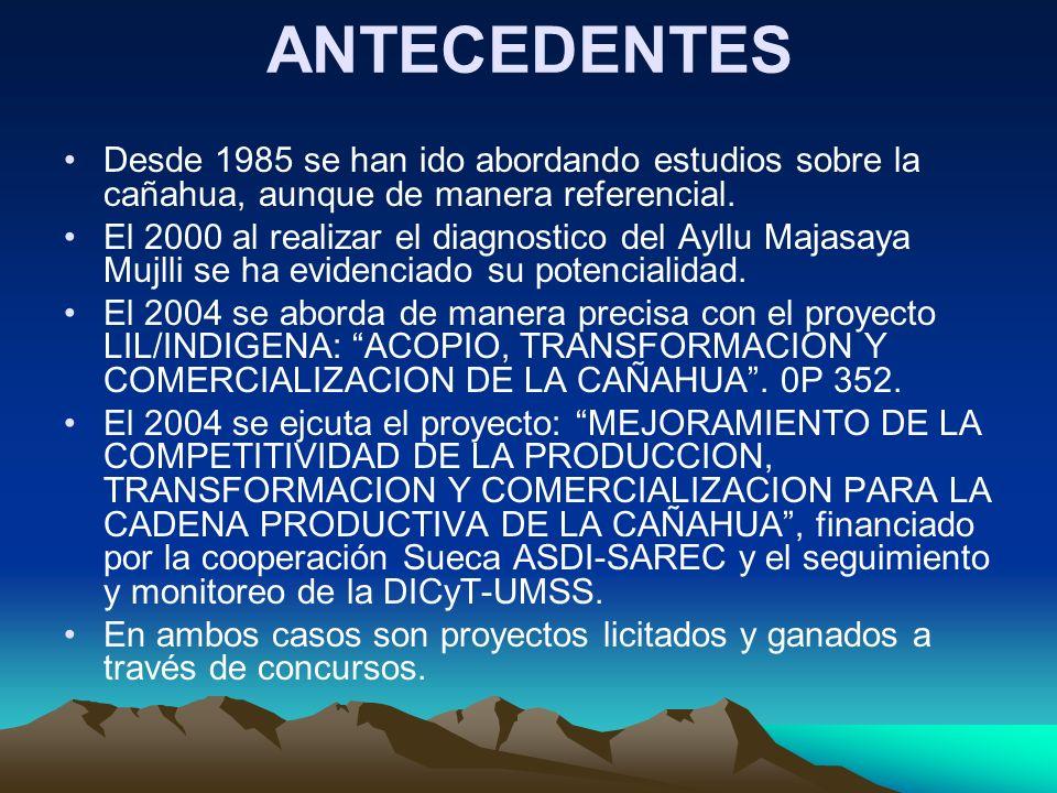 ANTECEDENTES Desde 1985 se han ido abordando estudios sobre la cañahua, aunque de manera referencial. El 2000 al realizar el diagnostico del Ayllu Maj