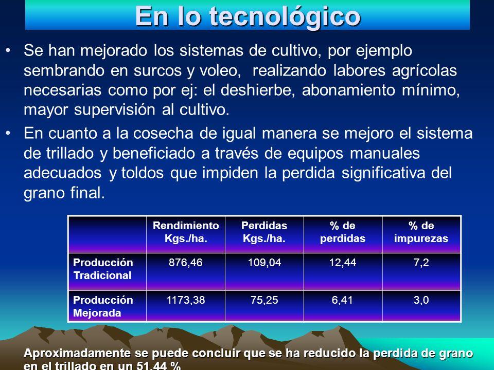 En lo tecnológico Se han mejorado los sistemas de cultivo, por ejemplo sembrando en surcos y voleo, realizando labores agrícolas necesarias como por e
