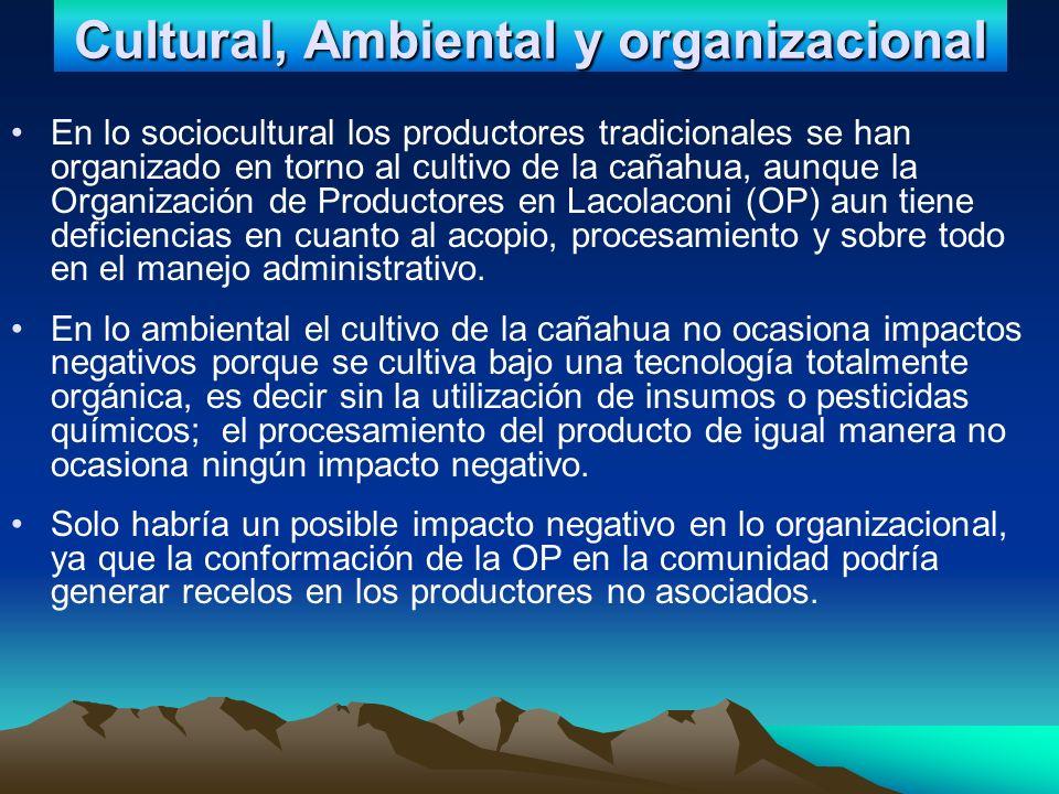 Cultural, Ambiental y organizacional En lo sociocultural los productores tradicionales se han organizado en torno al cultivo de la cañahua, aunque la