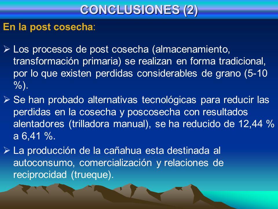 CONCLUSIONES (2) En la post cosecha: Los procesos de post cosecha (almacenamiento, transformación primaria) se realizan en forma tradicional, por lo q