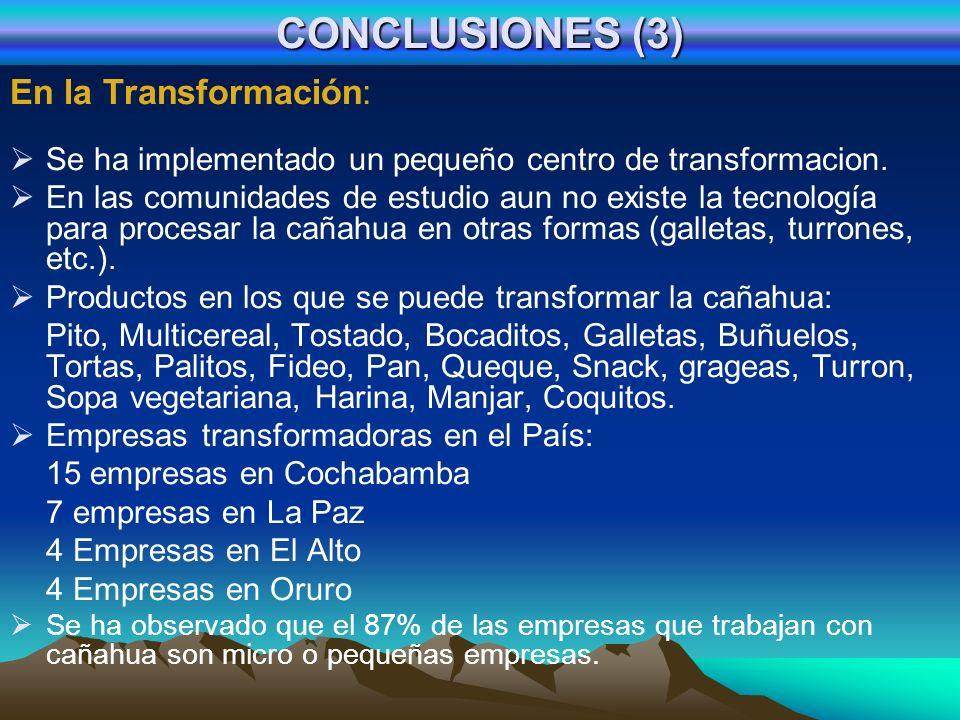 CONCLUSIONES (4) En Comercialización: Los comunarios del ayllu comercializan la cañahua en forma de grano bruto, grano tostado y pito de cañahua, en ferias campesinas cercanas al Ayllu, lo que les permite obtener un valor agregado interesante, como también en la ciudad de Cochabamba.
