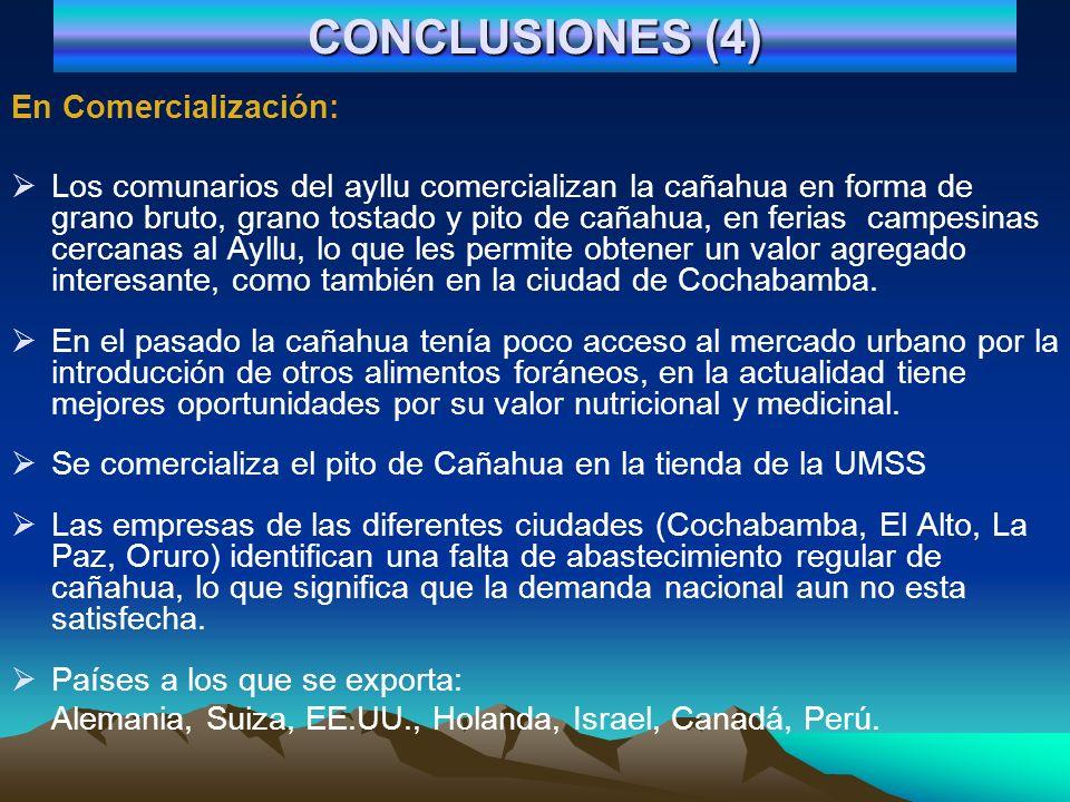 CONCLUSIONES (5) En el consumo: Solo el 19% de la población urbana cochabambina consume cañahua (valor nutritivo, sabor agradable, medicinal y novedad ancestral), el 81% no consume (escasa disponibilidad, falta de información, poca costumbre) y un 42% solo conoce el mismo.