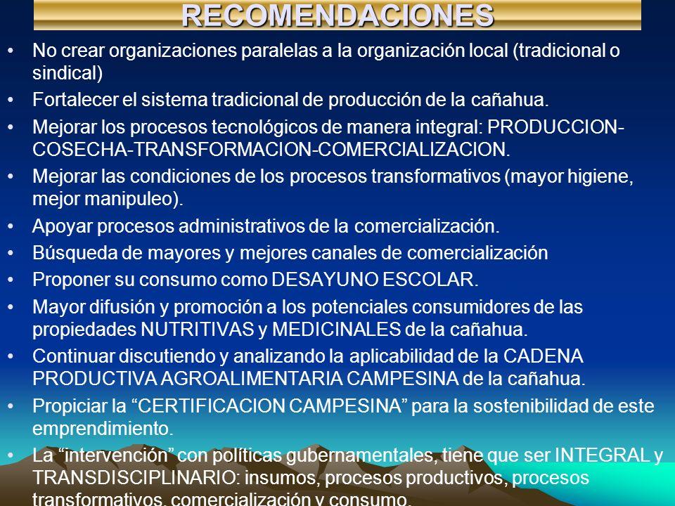 RECOMENDACIONES No crear organizaciones paralelas a la organización local (tradicional o sindical) Fortalecer el sistema tradicional de producción de