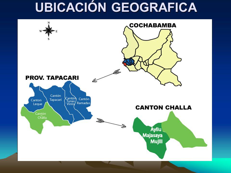 ESTRUCTURA ORGANIZATIVA Y SOCIO CULTURAL El AYLLU MAJASAYA MUJLLLI se encuentra en las alturas de la provincia Tapacari en el Dpto.