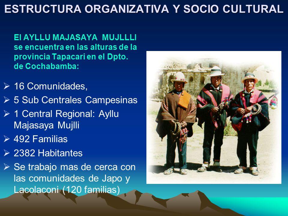 ESTRUCTURA ORGANIZATIVA Y SOCIO CULTURAL El AYLLU MAJASAYA MUJLLLI se encuentra en las alturas de la provincia Tapacari en el Dpto. de Cochabamba: 16