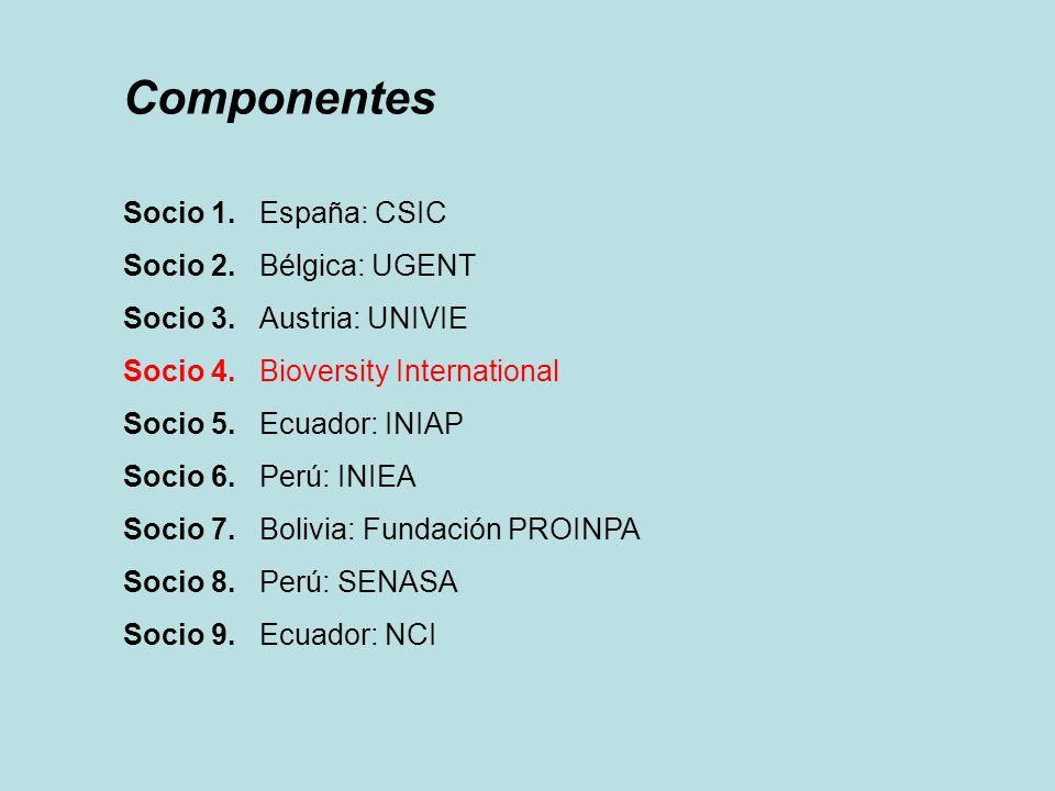 Componentes Socio 1. España: CSIC Socio 2. Bélgica: UGENT Socio 3. Austria: UNIVIE Socio 4. Bioversity International Socio 5. Ecuador: INIAP Socio 6.