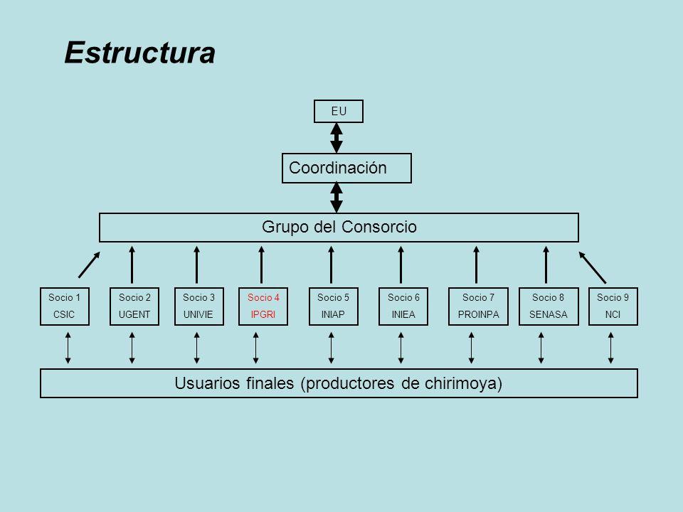 Objetivo Desarrollar los sistemas de producción sustentable de chirimoya en tres países de los Andes (Bolivia, Ecuador y Perú) basado en la caracterización, conservación y uso de los recursos genéticos locales.
