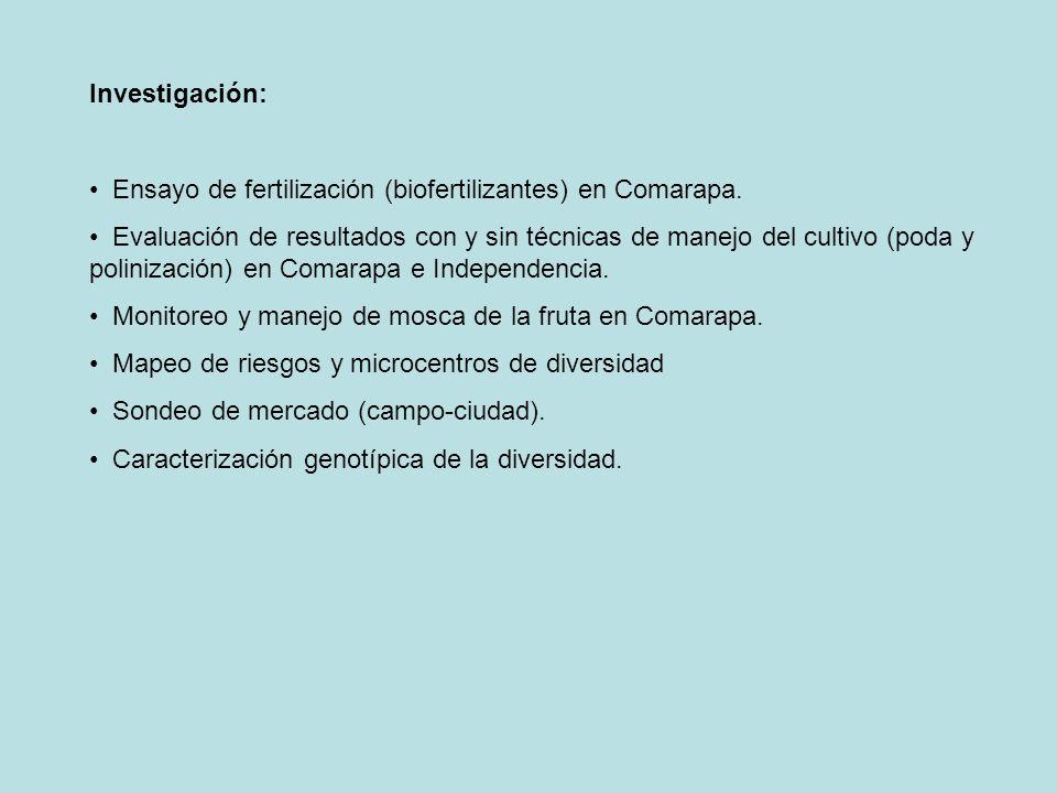 Investigación: Ensayo de fertilización (biofertilizantes) en Comarapa. Evaluación de resultados con y sin técnicas de manejo del cultivo (poda y polin