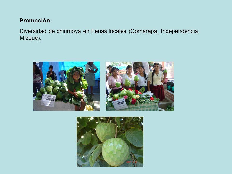Promoción: Diversidad de chirimoya en Ferias locales (Comarapa, Independencia, Mizque).