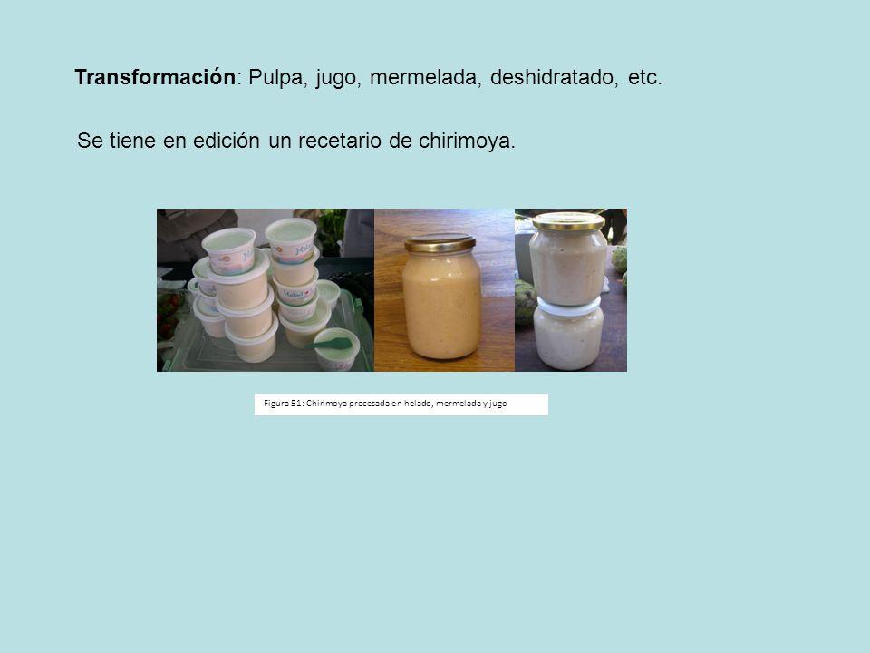 Transformación: Pulpa, jugo, mermelada, deshidratado, etc. Se tiene en edición un recetario de chirimoya. Figura 51: Chirimoya procesada en helado, me