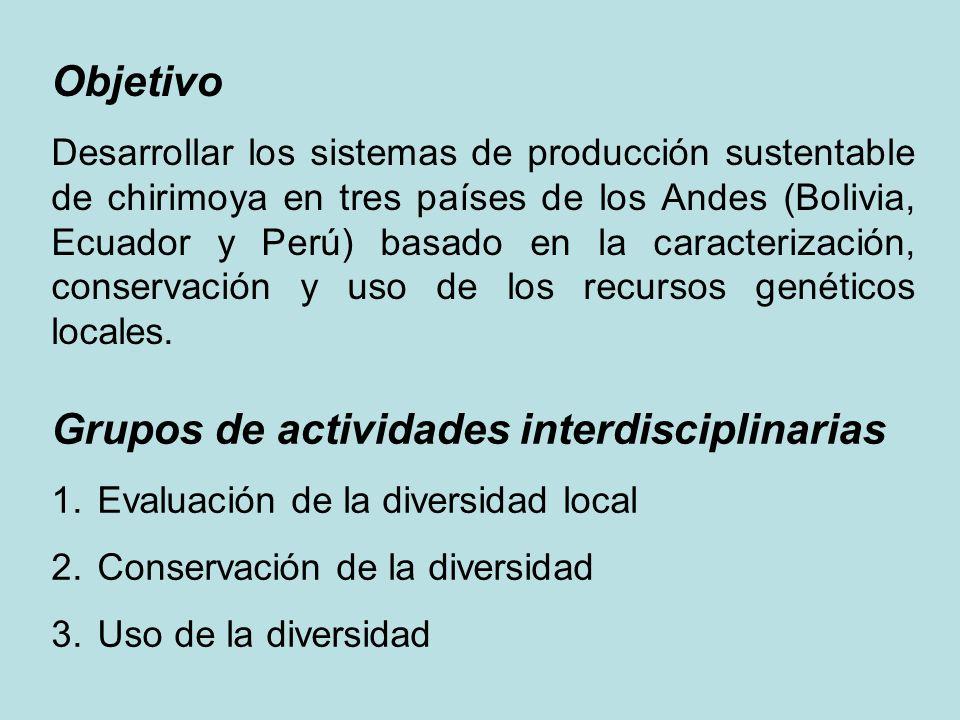 Objetivo Desarrollar los sistemas de producción sustentable de chirimoya en tres países de los Andes (Bolivia, Ecuador y Perú) basado en la caracteriz