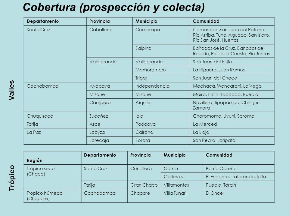 Cobertura (prospección y colecta) Región DepartamentoProvinciaMunicipioComunidad Trópico seco (Chaco) Santa CruzCordilleraCamiriBarrio Obrero Gutierre