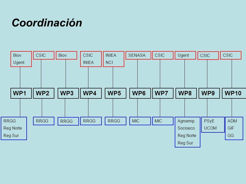 Coordinación RRGG Reg Norte Reg Sur WP1WP2WP3WP4WP5WP6WP7WP8WP9 Biov. Ugent CSICBiov.CSIC INIEA NCI SENASACSICUgent CSIC RRGG MIC Agroemp. Socioeco. R