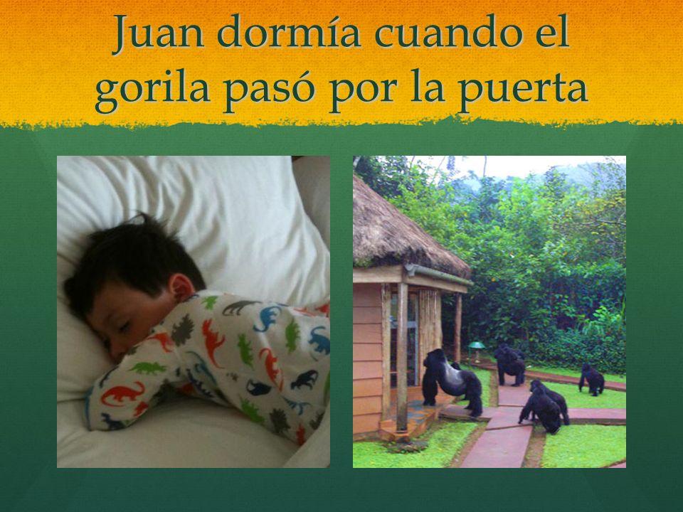 Juan dormía cuando el gorila pasó por la puerta