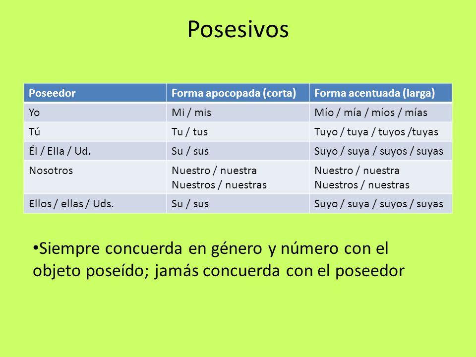 Posesivos PoseedorForma apocopada (corta)Forma acentuada (larga) YoMi / misMío / mía / míos / mías TúTu / tusTuyo / tuya / tuyos /tuyas Él / Ella / Ud