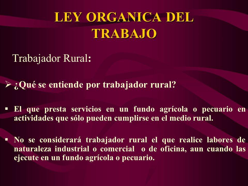 Trabajador Rural: ¿Qué se entiende por trabajador rural? El que presta servicios en un fundo agrícola o pecuario en actividades que sólo pueden cumpli