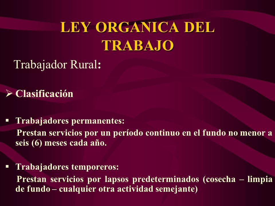 Trabajador Rural: Clasificación Trabajadores permanentes: Prestan servicios por un período continuo en el fundo no menor a seis (6) meses cada año. Tr