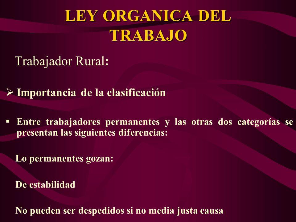 Trabajador Rural: Importancia de la clasificación Entre trabajadores permanentes y las otras dos categorías se presentan las siguientes diferencias: L