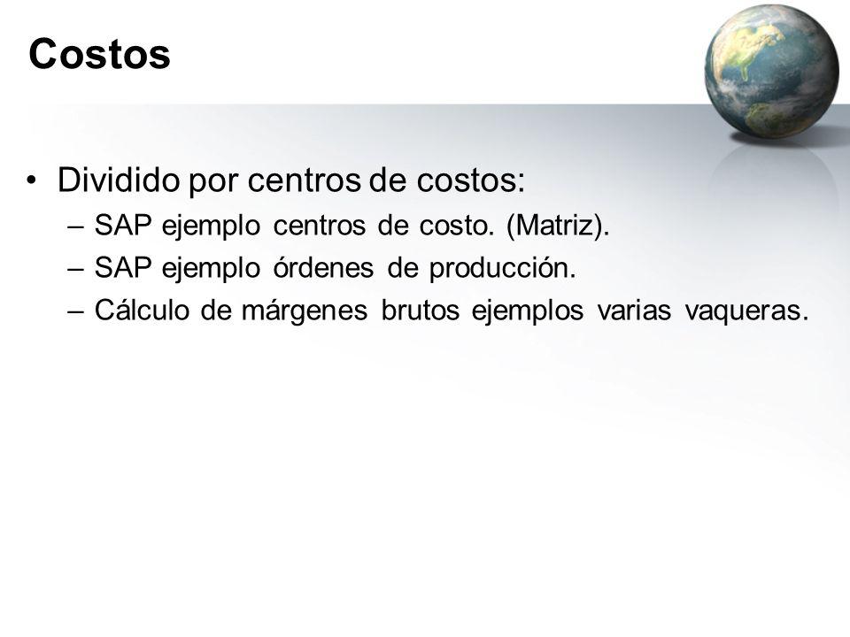Costos Dividido por centros de costos: –SAP ejemplo centros de costo. (Matriz). –SAP ejemplo órdenes de producción. –Cálculo de márgenes brutos ejempl