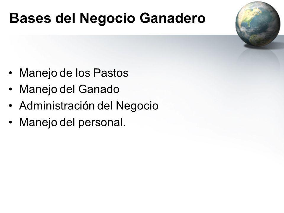 Bases del Negocio Ganadero Manejo de los Pastos Manejo del Ganado Administración del Negocio Manejo del personal.