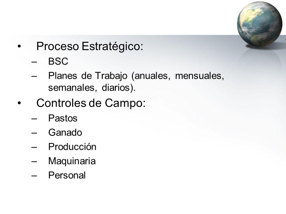 Proceso Estratégico: –BSC –Planes de Trabajo (anuales, mensuales, semanales, diarios). Controles de Campo: –Pastos –Ganado –Producción –Maquinaria –Pe