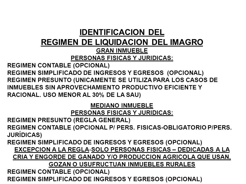 IDENTIFICACION DEL REGIMEN DE LIQUIDACION DEL IMAGRO GRAN INMUEBLE PERSONAS FISICAS Y JURIDICAS: REGIMEN CONTABLE (OPCIONAL) REGIMEN SIMPLIFICADO DE I