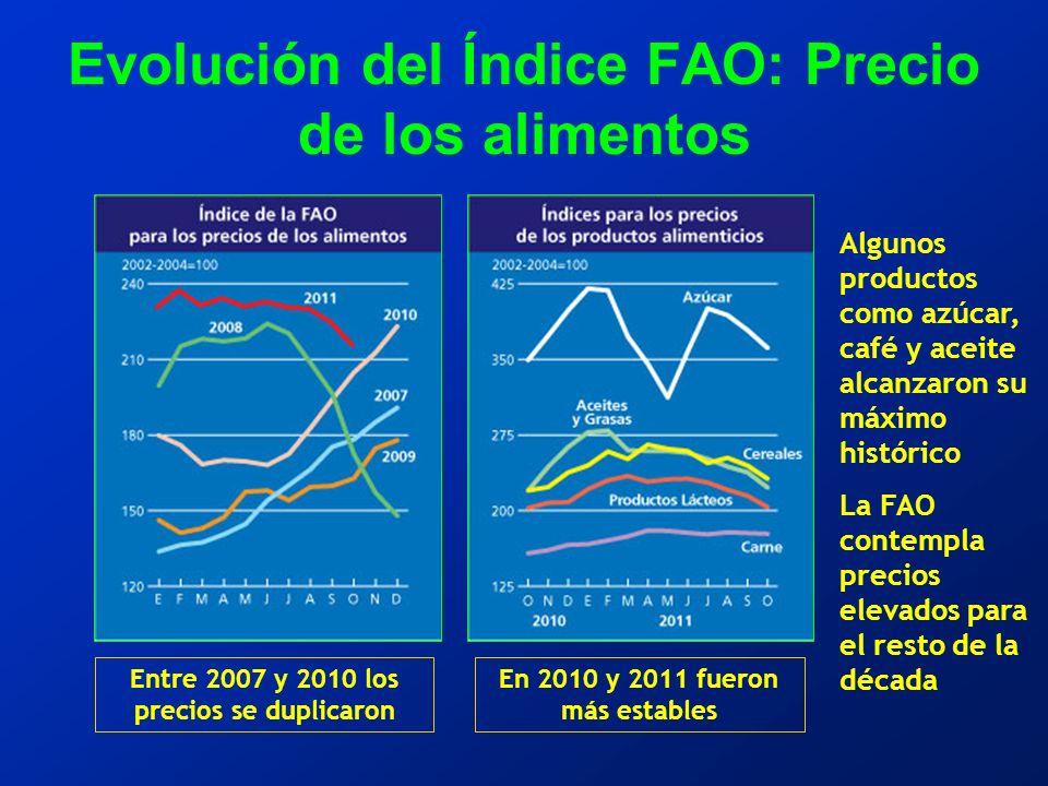 Evolución del Índice FAO: Precio de los alimentos Entre 2007 y 2010 los precios se duplicaron En 2010 y 2011 fueron más estables Algunos productos como azúcar, café y aceite alcanzaron su máximo histórico La FAO contempla precios elevados para el resto de la década