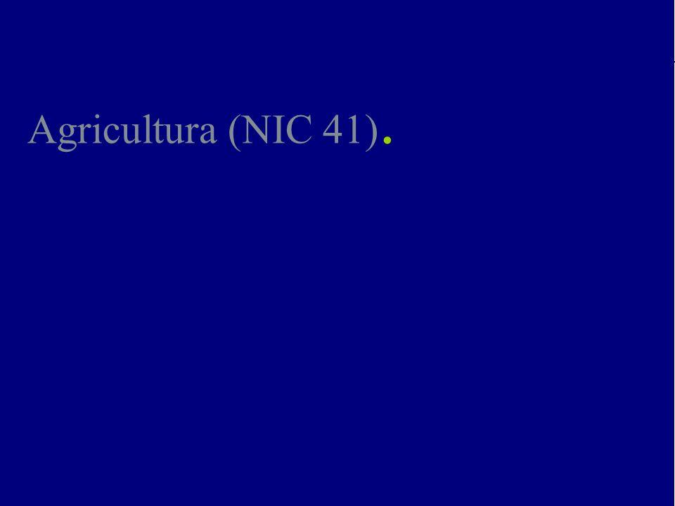 Impactos de la NIC 41 y la DPC-10 en Fincas Octubre, 2007 Lara Marambio & Asociados RIF: J-00327665-0