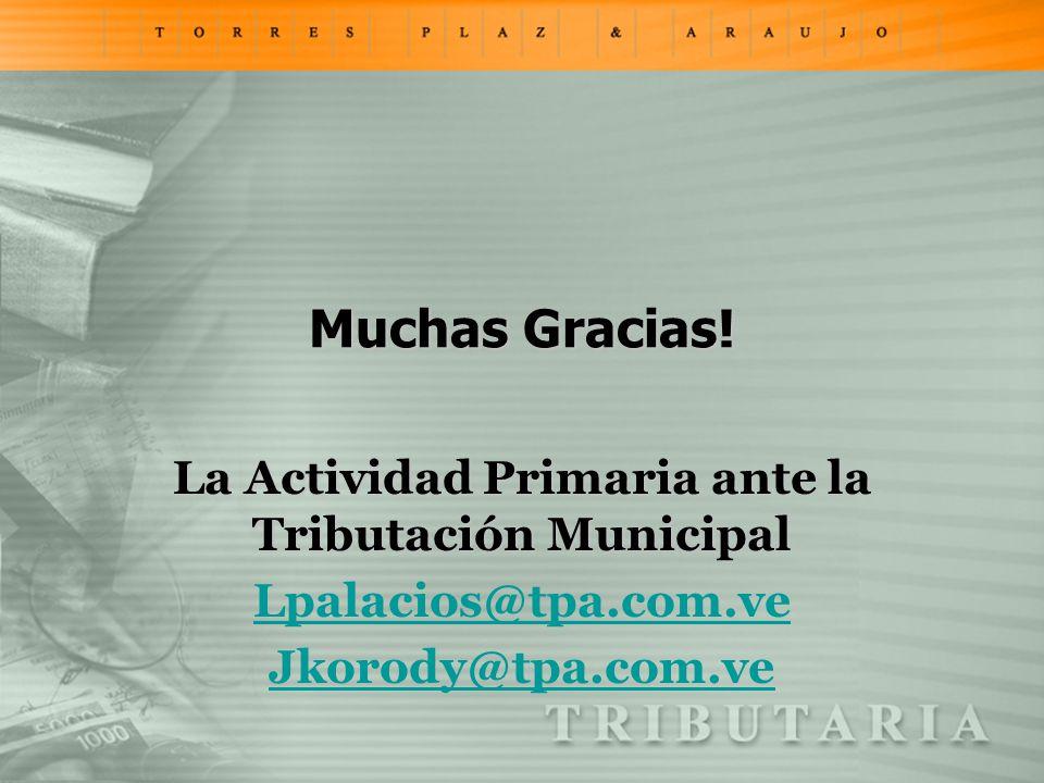 Muchas Gracias! La Actividad Primaria ante la Tributación Municipal Lpalacios@tpa.com.ve Jkorody@tpa.com.ve