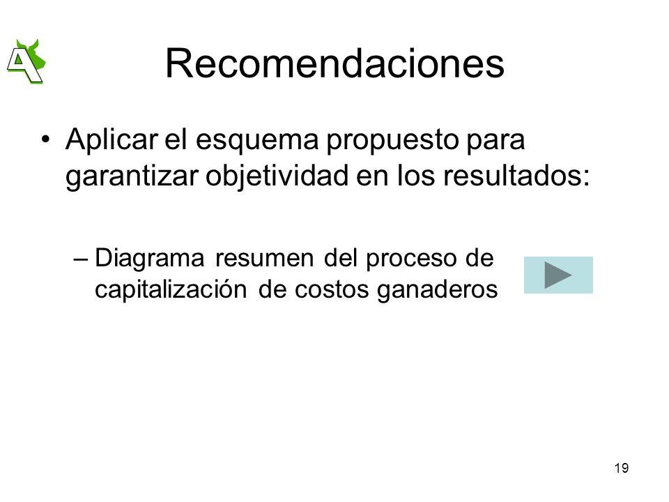 19 Recomendaciones Aplicar el esquema propuesto para garantizar objetividad en los resultados: –Diagrama resumen del proceso de capitalización de cost