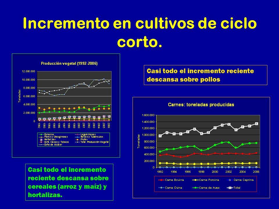Incremento en cultivos de ciclo corto. Casi todo el incremento reciente descansa sobre cereales (arroz y maíz) y hortalizas. Casi todo el incremento r