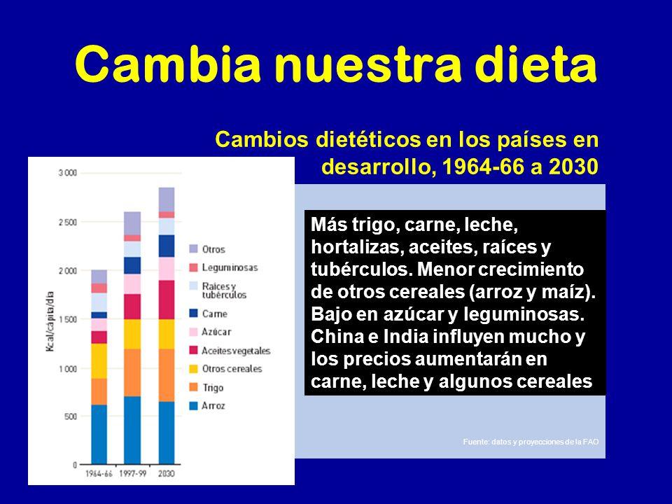Cambia nuestra dieta Cambios dietéticos en los países en desarrollo, 1964-66 a 2030 Fuente: datos y proyecciones de la FAO Más trigo, carne, leche, ho