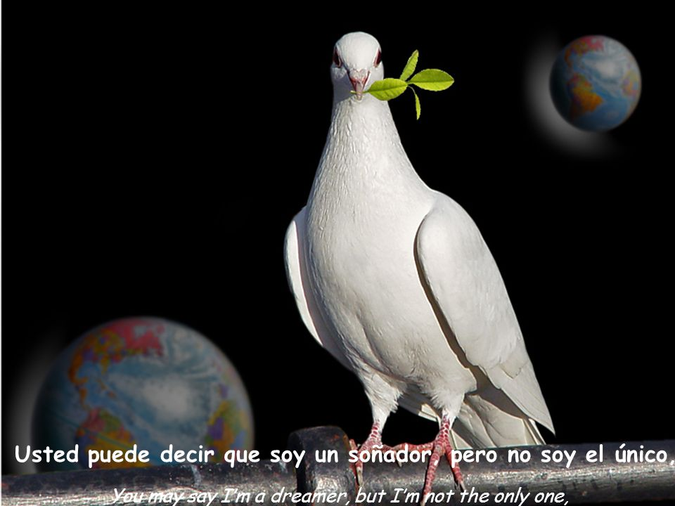 Usted puede decir que soy un soñador, pero no soy el único, You may say Im a dreamer, but Im not the only one,