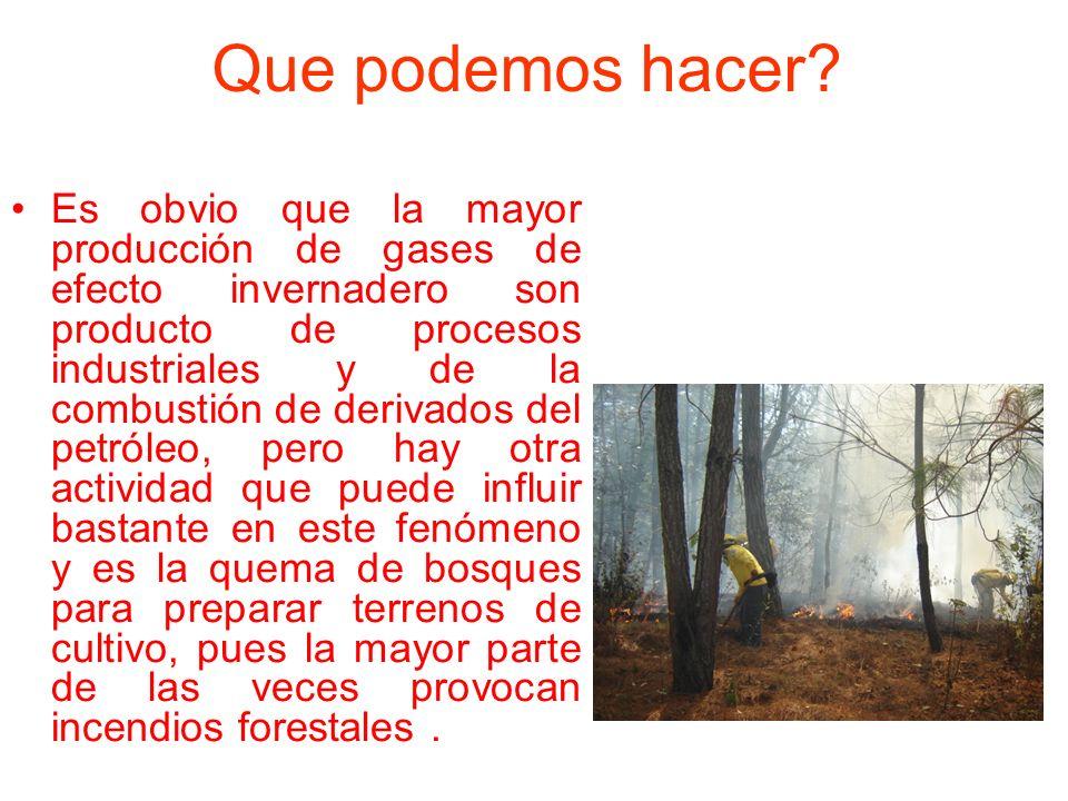 Que podemos hacer? Es obvio que la mayor producción de gases de efecto invernadero son producto de procesos industriales y de la combustión de derivad
